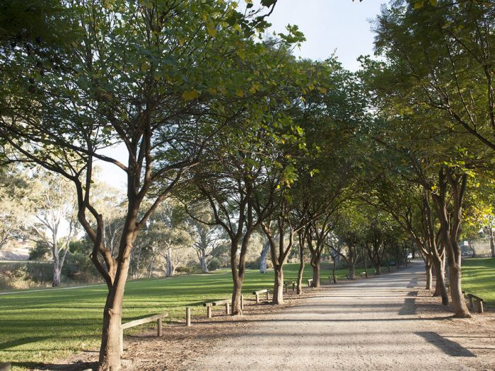 Clonlea Park