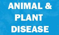 Animal Plant Disease